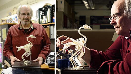Jack Horner - Paleontologist