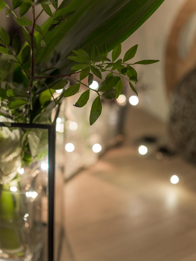 valokuvausvinkit blogi, suuri aukko, pieni terävyysalue, kaunis bokeh, hyvä objektiivi zuiko 25 mm f1.8