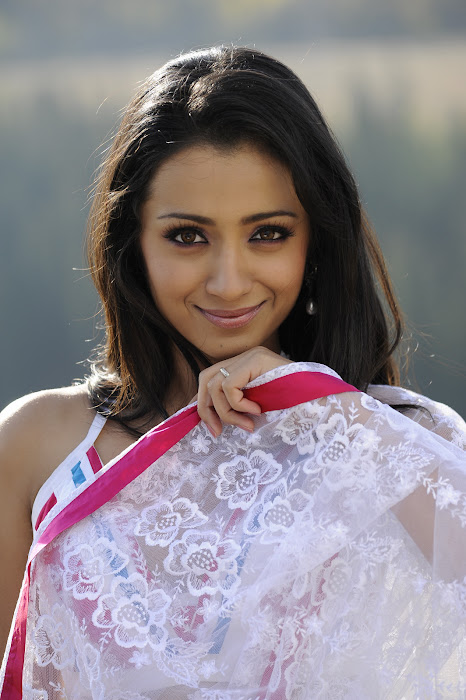 trisha in transparent saree unseen pics