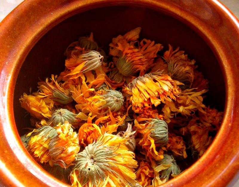 Cvijetni čaj od nevena