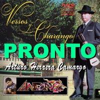 Arturo Herrera Camargo