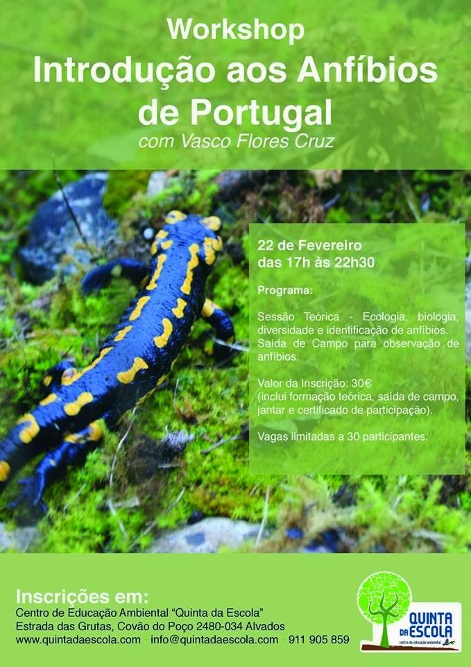 Introdução aos Anfíbios de Portugal - Workshop