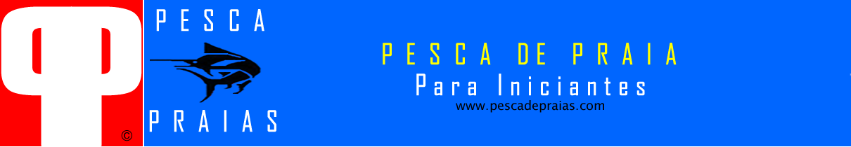 Pesca de Praia Para Iniciantes