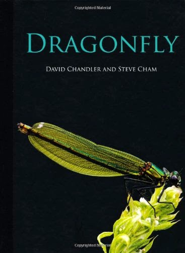 Dragonfly - cover image