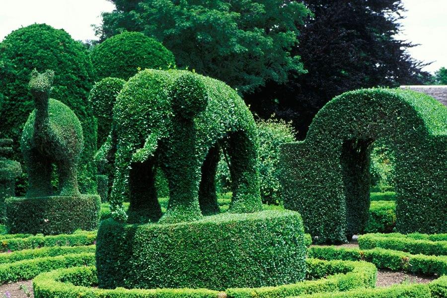 Loveisspeed garden party for Garden animals
