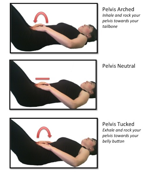 It Also Allows The Body To Find Relationship Between Engagement In Pelvic Floor And Release Muscles Of