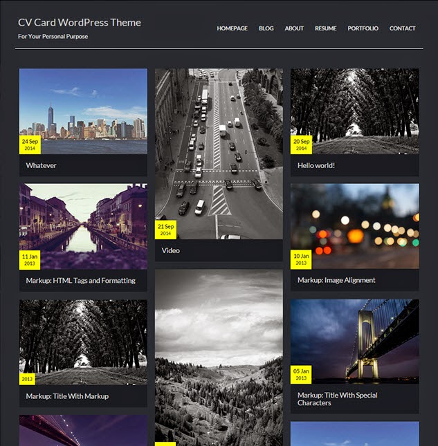 CV Card WordPress Theme