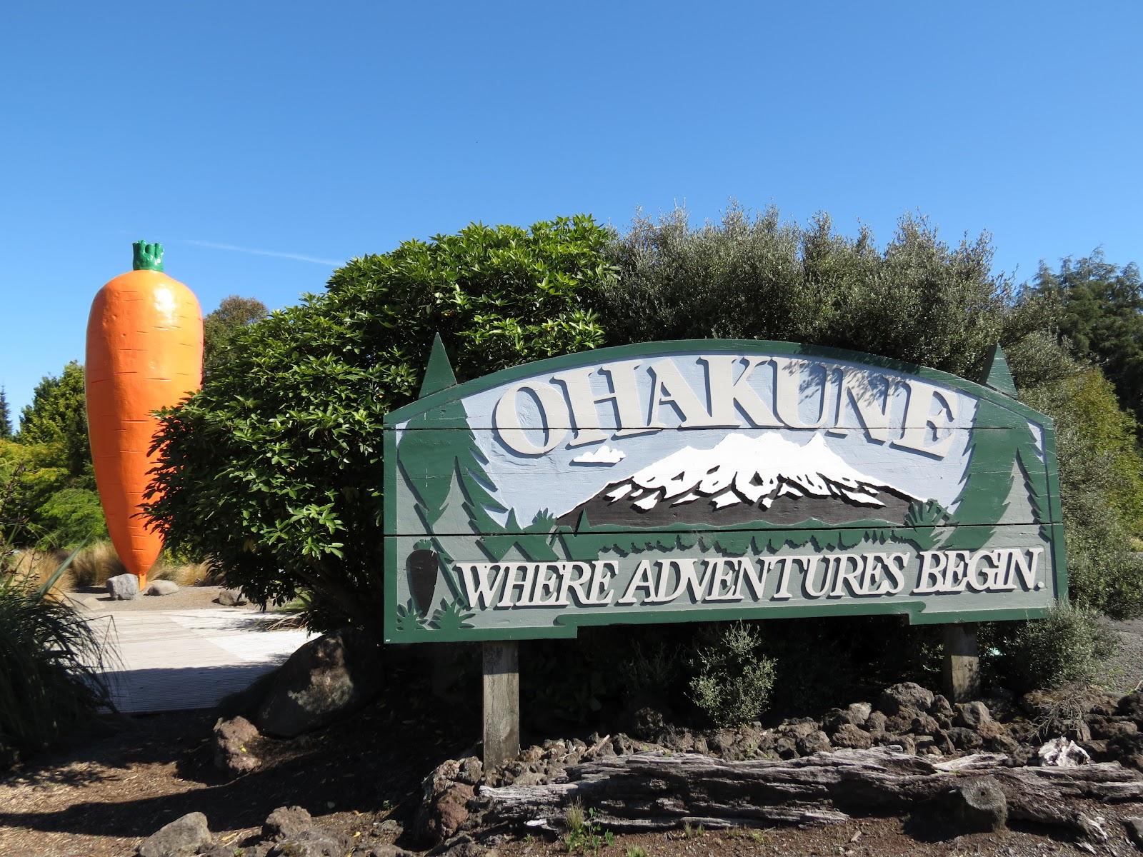 Ohakune New Zealand  city photos : Flying Hippo: Ohakune, New Zealand