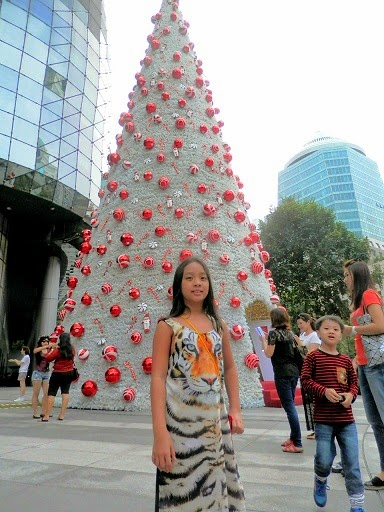 Orchard Road Christmas 2014