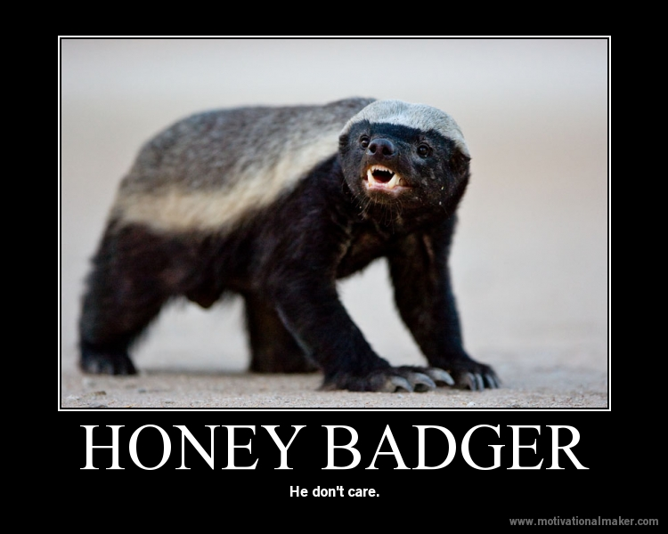 honey badger don t care