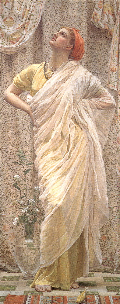 albert moore birds