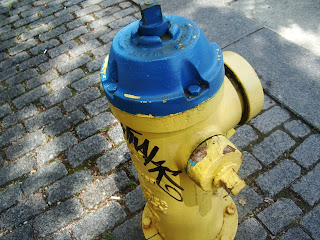 yellow fire hydrant in the country