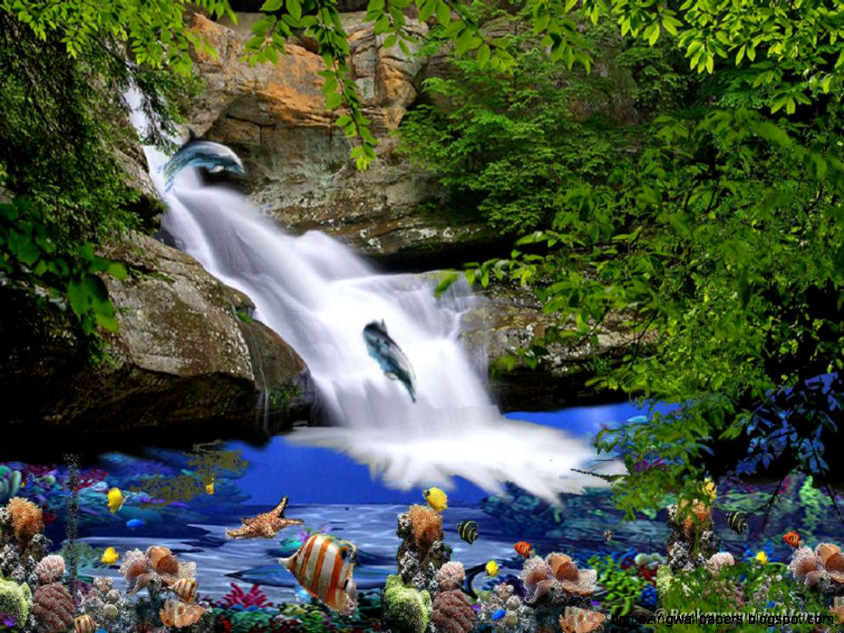 Rainbow Tropical Rainforest Waterfalls Desktop Wallpaper