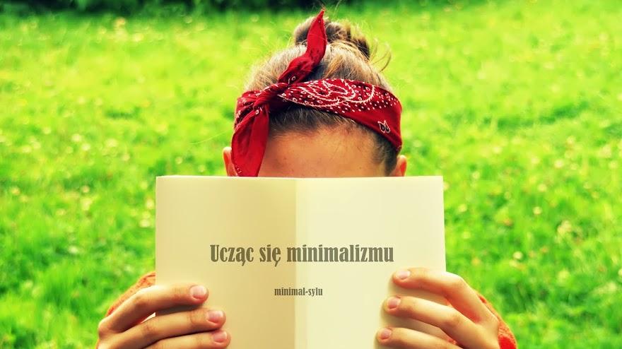Ucząc się minimalizmu