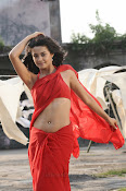 Surveen Chawla Hot Photos-thumbnail-5