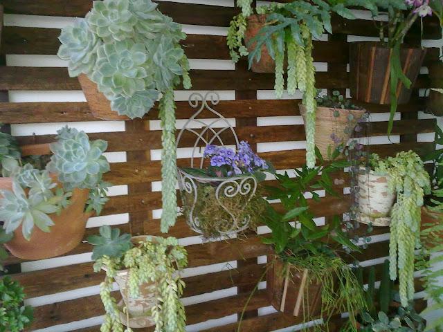 jardim vertical sacada:Jardim Vertical; Ideal para churrasqueiras, sacadas, piscinas ou