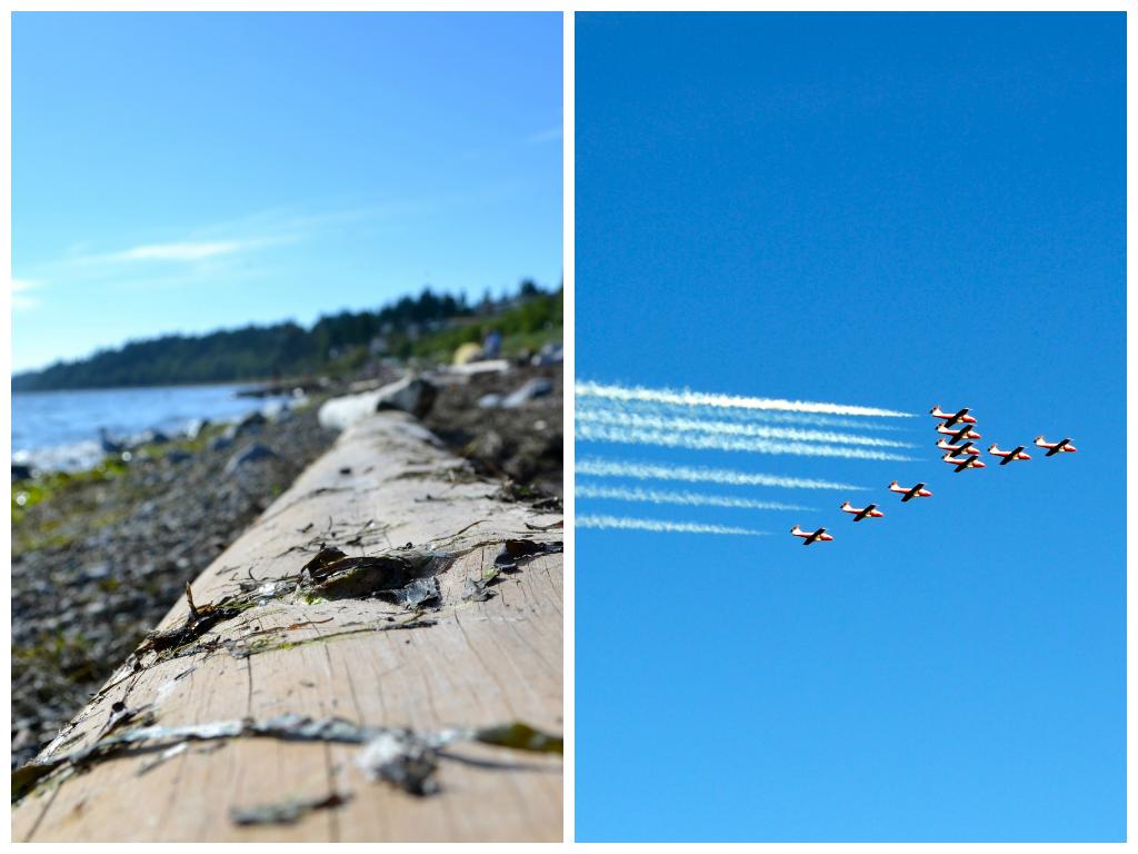 snowbirds planes at the beach
