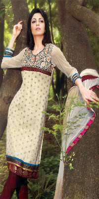 Indian Punjabi Suits Pictures Pics Images 2013