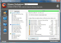 CCleaner Business Edition 3