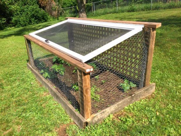 El hogar bricolgage y decoraci n jaula para jardines for Jardin 81 treinta y tres