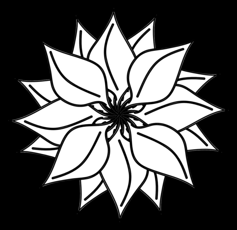 White Flower Bouquet Clip Art Amazing Wallpapers