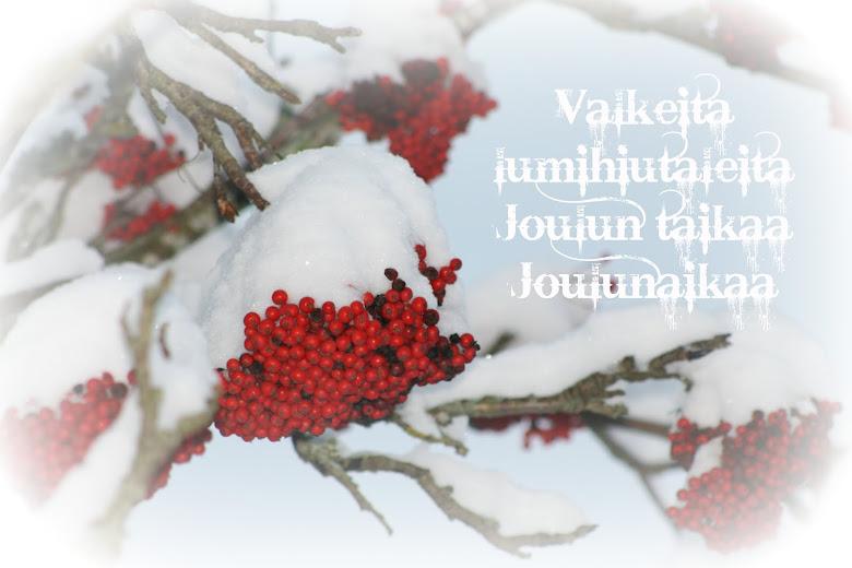 Valkeita lumihiutaleita; Joulun taikaa; Joulunaikaa