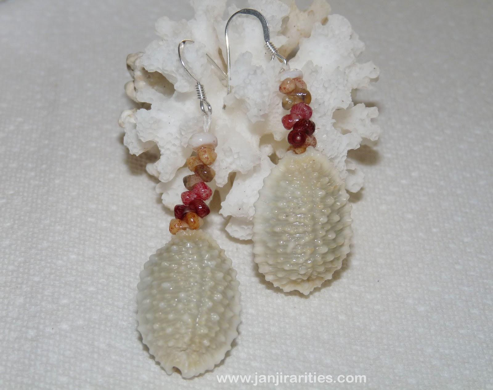 Kahelelani & Sunrise Shell Jewelry By Janjira: Hawaiian Granulated Cowrie  Shell Earrings