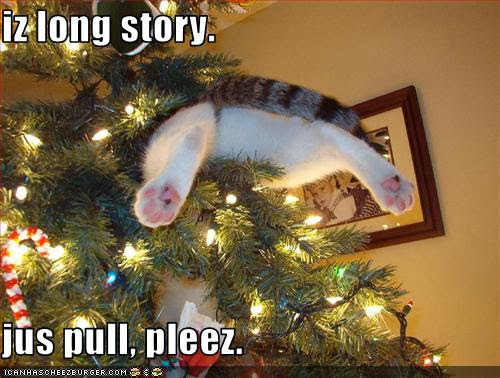 Cat Stuck In Christmas Tree