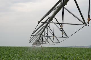 Agricultura irrigada - expansão assegurada com mais investimentos do Governo Federal - Foto: Cristiano Zinato