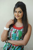 Neha deshpande Photos at Dil Diwana press meet-thumbnail-16