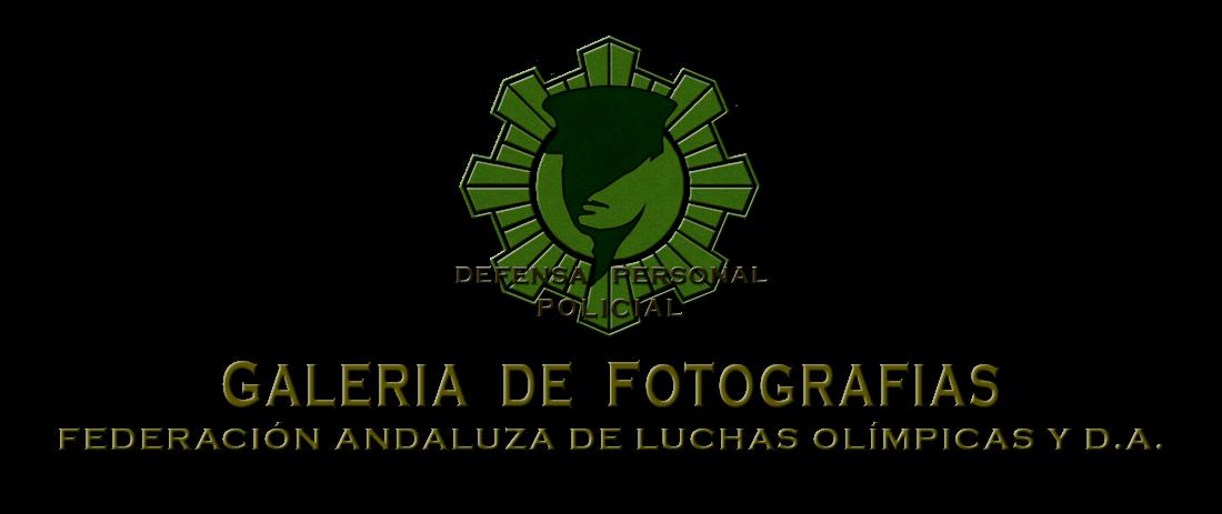 GALERIA DE FOTOGRAFIAS DE DPP FALODA