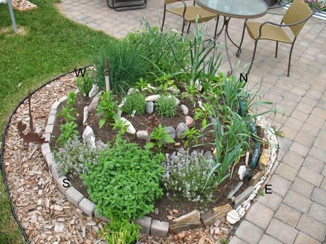 plantas jardim mediterraneo , plantas, jardinagem e paisagismo Como