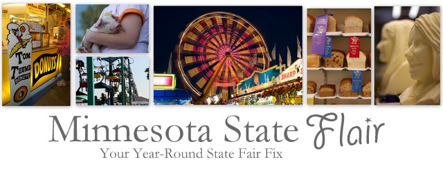Minnesota State Flair