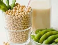manfaat susu kedelai untuk menurunkan berat badan