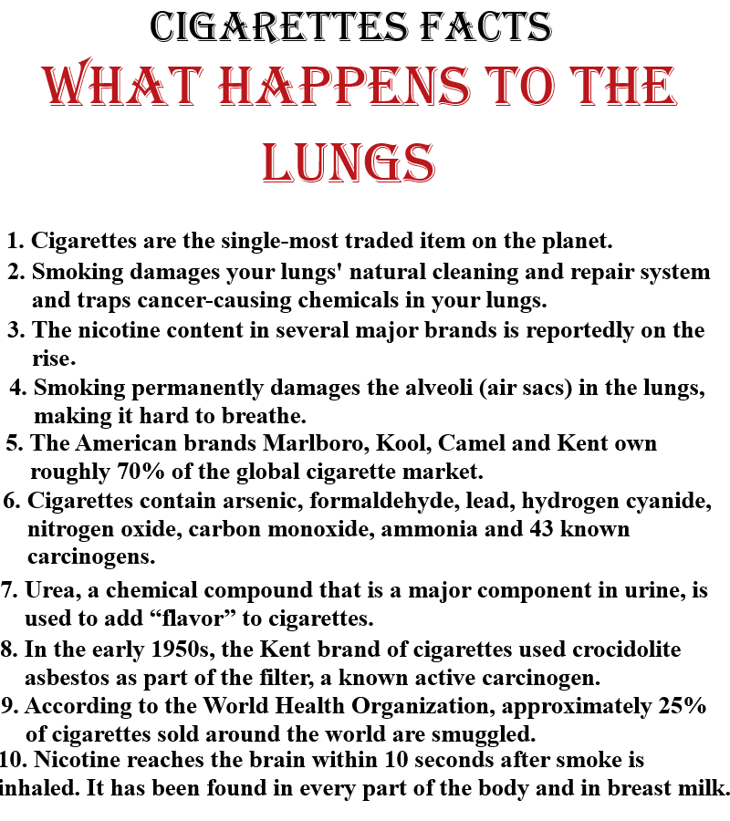 Fast Facts - Smoking Stinks