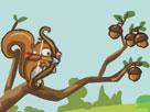 Nişancı Sincap Oyunu