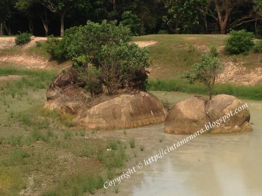 batu tengkorak di pulau besar