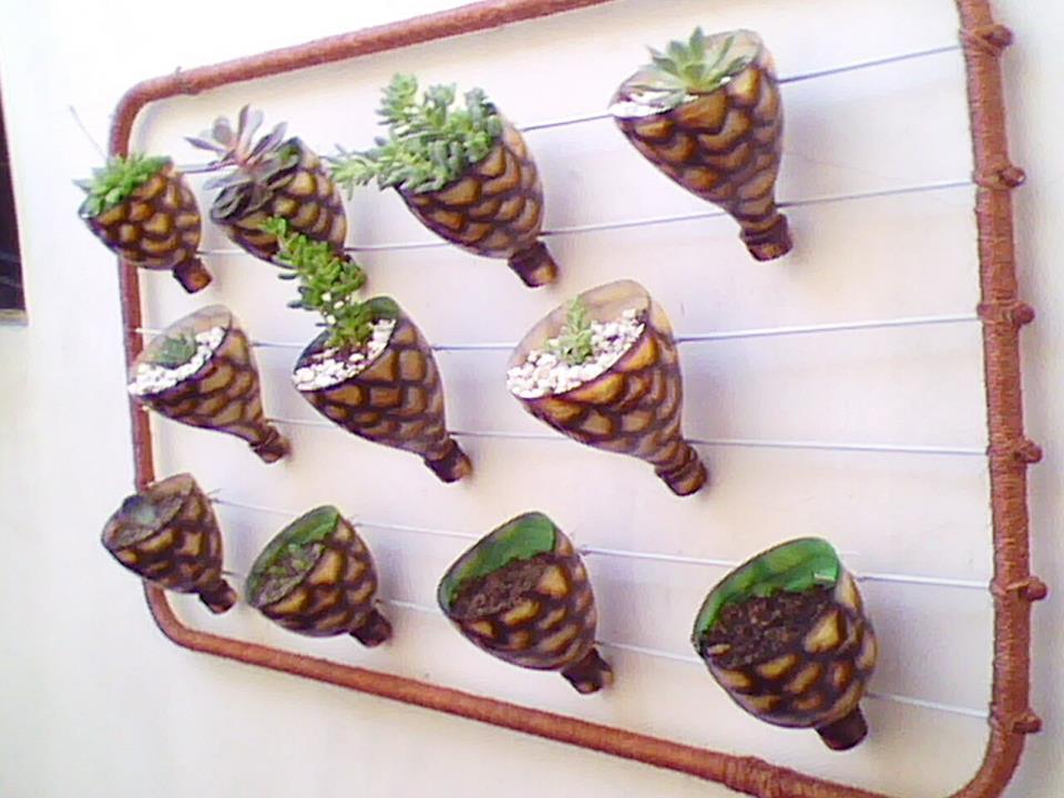 mini jardim reciclado:Idéias para campos e jardins: Idéias incríveis com garrafas pets