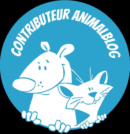 """Je suis partenaire contributeur sur """"Animalblog"""" (woufbox)"""