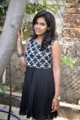 Model Bhargavi Photos at Pochampally Ikat art mela launch-thumbnail-6