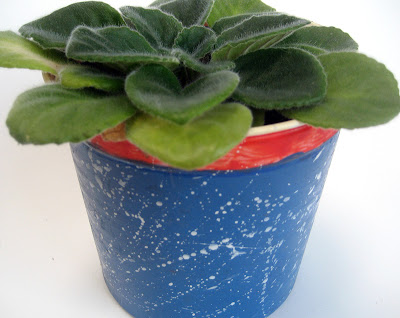 Plant pot made from cottage cheese tub