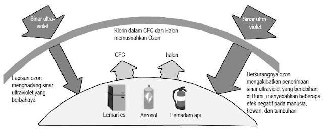 Fungsi lapisan ozon