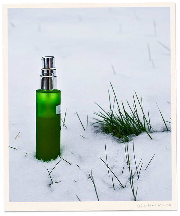 Psynopsis Green Zelens Bottle in Snow