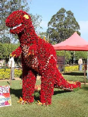 Ooty Flower Show 2011 Stills
