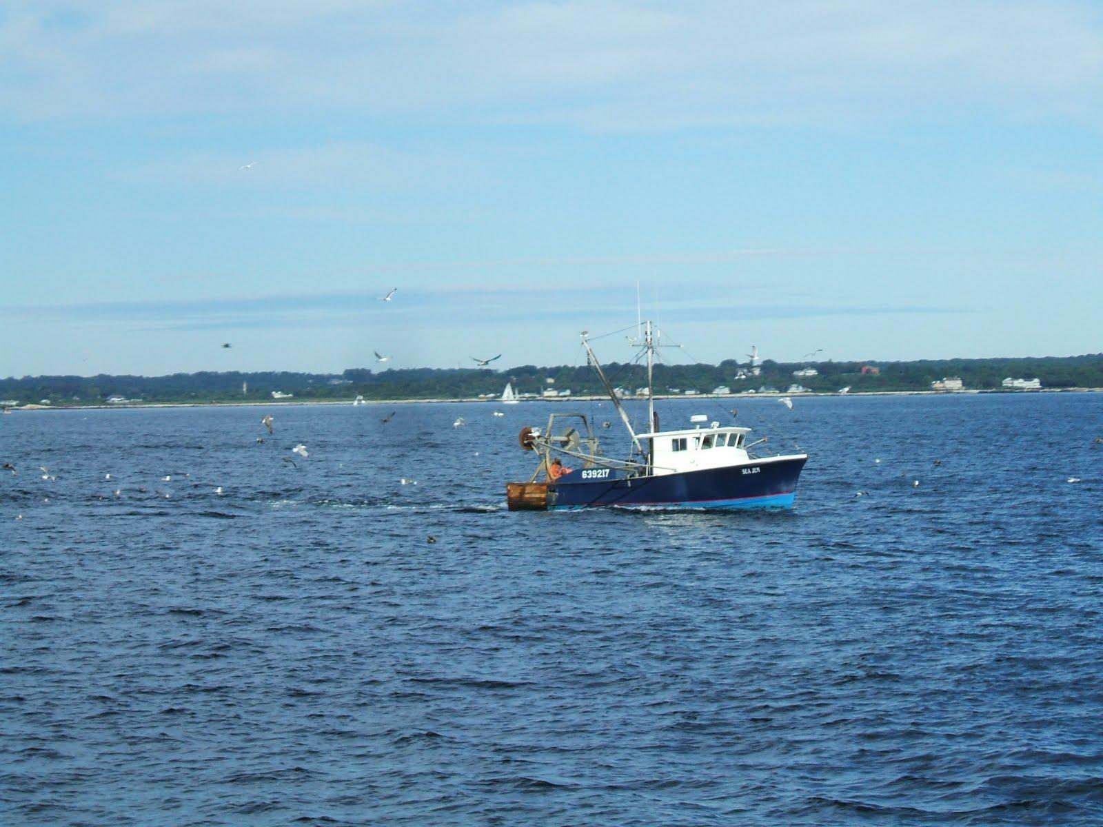 Rhode island college savings plans of bank savings for Fishing in rhode island