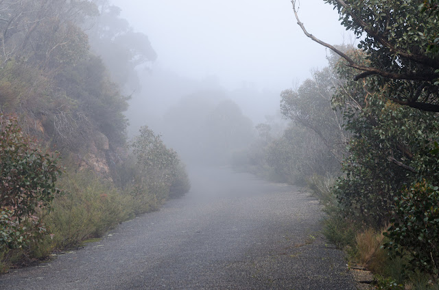 road to mount william covered in low cloud