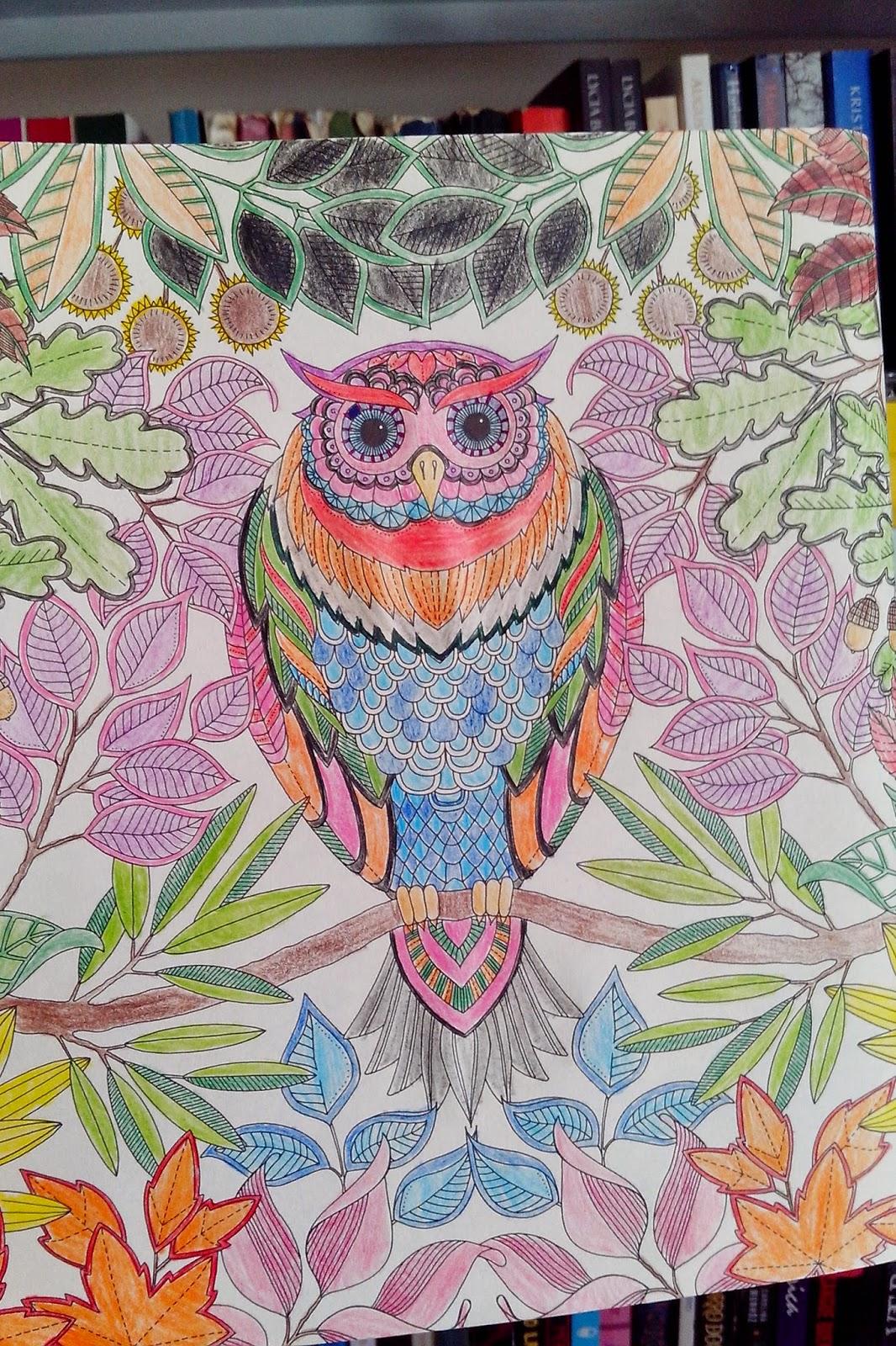 ideias para pintar livro jardim secretode abril de 2015