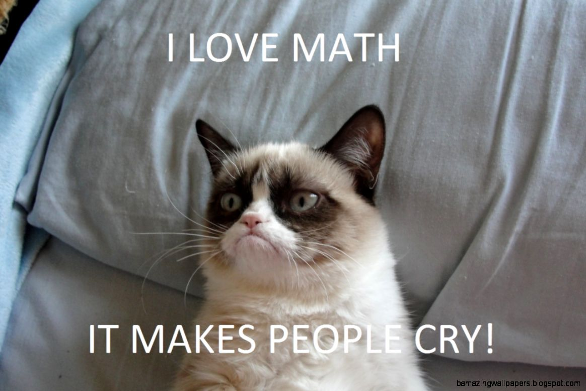 Grumpy cat math 2  Grumpy Cat  Know Your Meme