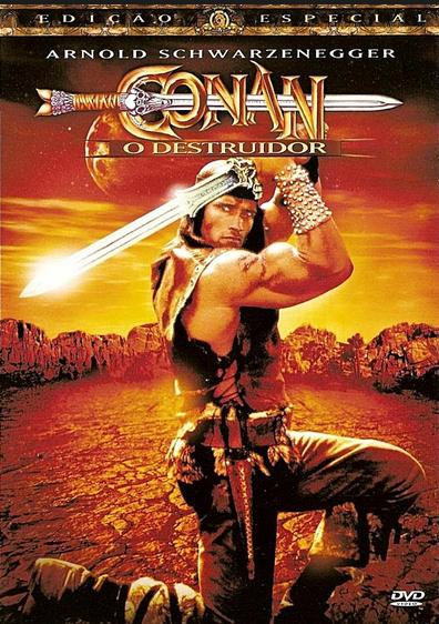 Filme Conan O Destruidor Dublado AVI DVDRip