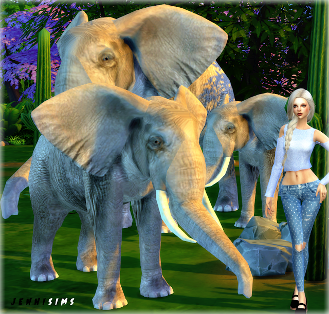 Jennisims: Downloads sims 4:Pets sets Decoration (Elephant